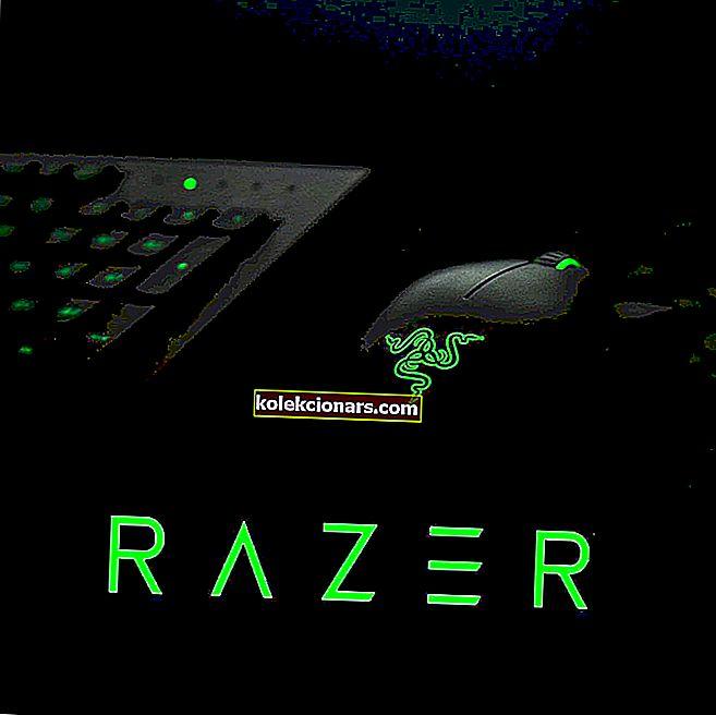 """""""Razer"""" pelės tvarkyklė: tinkamas """"Windows 10"""" diegimo vadovas"""