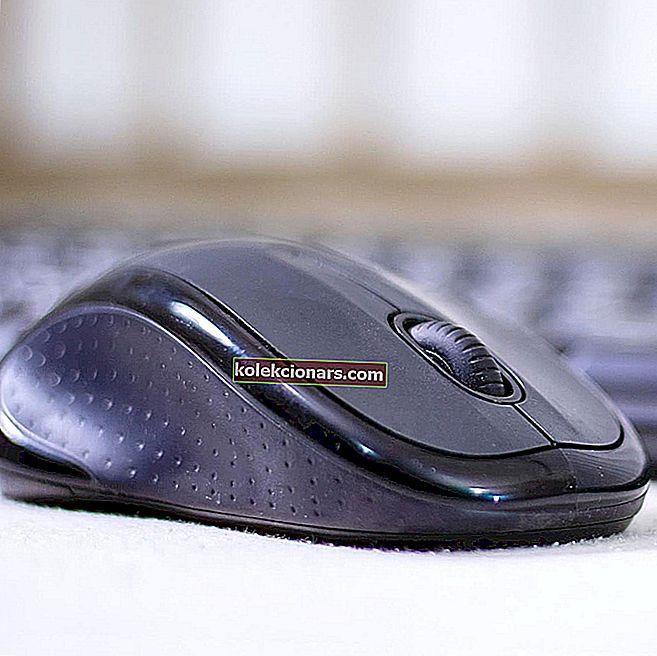 ΕΠΙΔΙΌΡΘΩΣΗ: Κάντε διπλό κλικ στο ποντίκι σε υπολογιστές με Windows